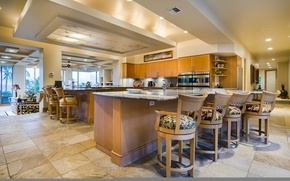 Picture home, luxury, hawaii, kitchen, maui