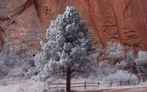 Picture frost, road, mountains, tree, rocks