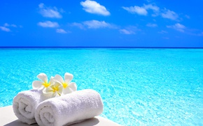 Picture sea, flowers, towel