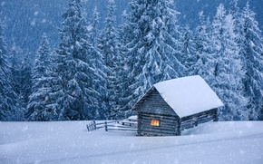 Picture winter, snow, tree, house, hut, landscape, winter, snow