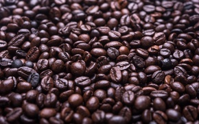 Wallpaper coffee, grain, a lot