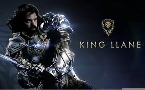 Picture cinema, sword, logo, game, Warcraft, lion, man, rpg, movie, rider, World of WarCraft, mmorpg, film, …