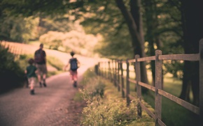 Picture road, leaves, the sun, macro, trees, nature, children, background, people, tree, widescreen, Wallpaper, mood, foliage, ...