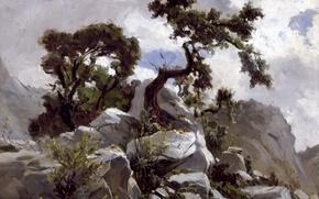 Picture trees, nature, stones, rocks, picture, Carlos de Haes, Mountain Landscape