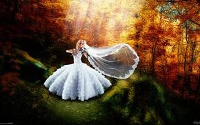 Picture autumn, girl, joy, happiness, violin, dress, art, the bride, veil, photographer, Alexander Prime