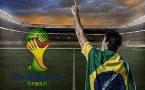 Picture logo, stadium, football, flag, World Cup, Brasil, FIFA, 2014