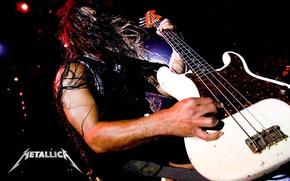 Wallpaper metallica, guitar, bass, Robert, trujillo, roberto, bassist, Trujillo