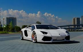 Picture white, the sky, clouds, white, lamborghini, front view, sky, clouds, aventador, lp700-4, Lamborghini, aventador