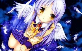 Picture girl, wings, anime, feathers, art, schoolgirl, angel beats!, angel beats, kanade tachibana