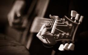 Picture Guitar, Grif, musical instrument, gitarushka, lag