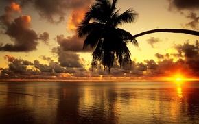 Wallpaper Sunset, Beach, Palma