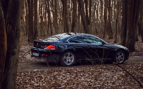 Picture BMW, E63, BMW6