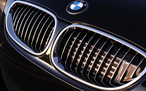 Picture bmw, grille, Auto, cars