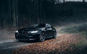Picture BMW, Schnitzer