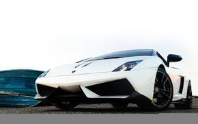 Picture white, Lamborghini, white, gallardo, Lamborghini, Gallardo, lp570-4 Performante