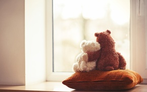 Picture love, toy, bear, window, bear, pair, pillow, love, friends, toy, bear, couple, window, cute, friends, ...