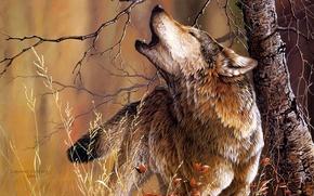 Wallpaper tree, wolf, art, Christoper B. Walden