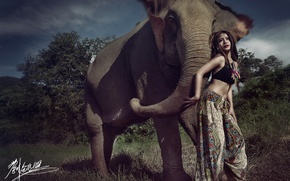 Picture girl, pose, elephant