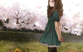 Picture girl, trees, flowers, anime, Sakura, art, kishida mel