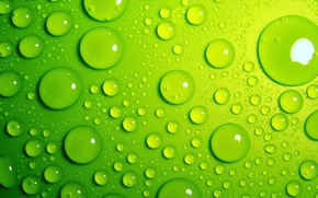 Picture water, drops, macro, green