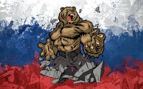 Wallpaper white, blue, red, art, Flag, Russia, bear.
