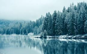 Picture Canada, USA, USA, Canada, British Columbia, British Columbia, Kootenay River, the Kootenay river