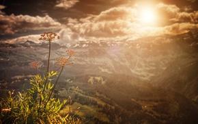 Picture the sun, treatment, view, mountains, landscape