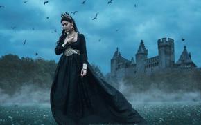 Picture birds, castle, dress, Queen, Tara Valentine