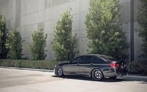 Picture BMW, black, F10