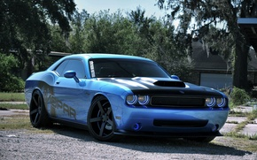 Picture Auto, Trees, Tuning, Machine, Dodge, Challenger
