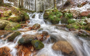 Picture forest, snow, trees, river, stones, France, stream