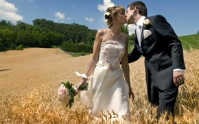 Picture field, kiss, pair, lovers, two, the bride, wedding, the groom