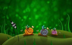 Picture green, figure, race, Snails