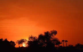 Picture the sky, sunset, silhouettes