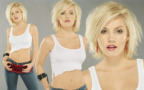 Picture on display, photo, photography, Elisha Cuthbert