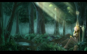 Picture forest, water, girl, light, trees, flowers, nature, butterfly, sword, anime, art, claymore, teresa