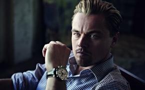 Picture Watch, Male, Actor, Shirt, Leonardo DiCaprio, Watch, Leonardo DiCaprio, Man, Tag Heuer, Actor