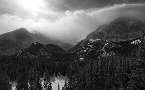 Picture forest, mountains, Black and white