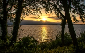 Picture the sun, trees, sunset, river, foliage, horizon, Bank, shrub