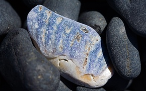 Wallpaper beach, macro stone, nature