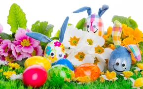 Picture eggs, Easter, Easter eggs, easter, happy easter