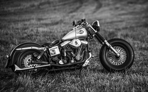 Picture design, style, motorcycle, form, bike, Harley-Davidson