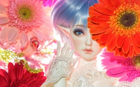 Picture flowers, elf, toy, doll, gerbera