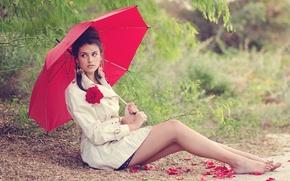 Picture flower, look, red, face, pose, umbrella, petals, brunette, sitting