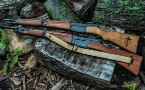 Picture weapons, rifle, French, store, MAS-36/51
