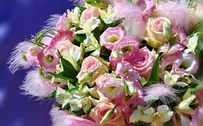 Picture Alstroemeria, roses, bouquet, eustoma