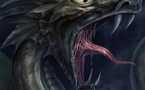 Picture language, dragon, mouth