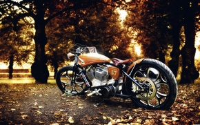 Picture autumn, leaves, trees, nature, Park, photo, bike, Harley Davidson