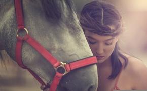 Picture face, mood, horse, model, horse, Arancha Ari Arevalo