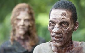 Picture zombie, look, makeup, work of art, The walking dead